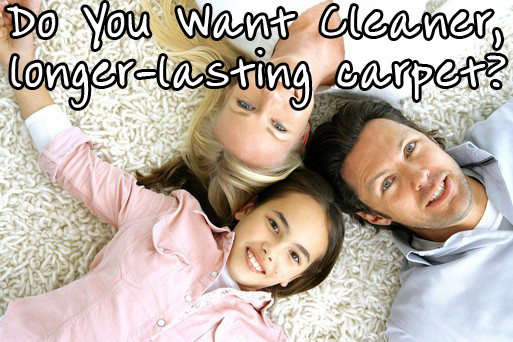 Carpet Cleaning Palm Harbor FL